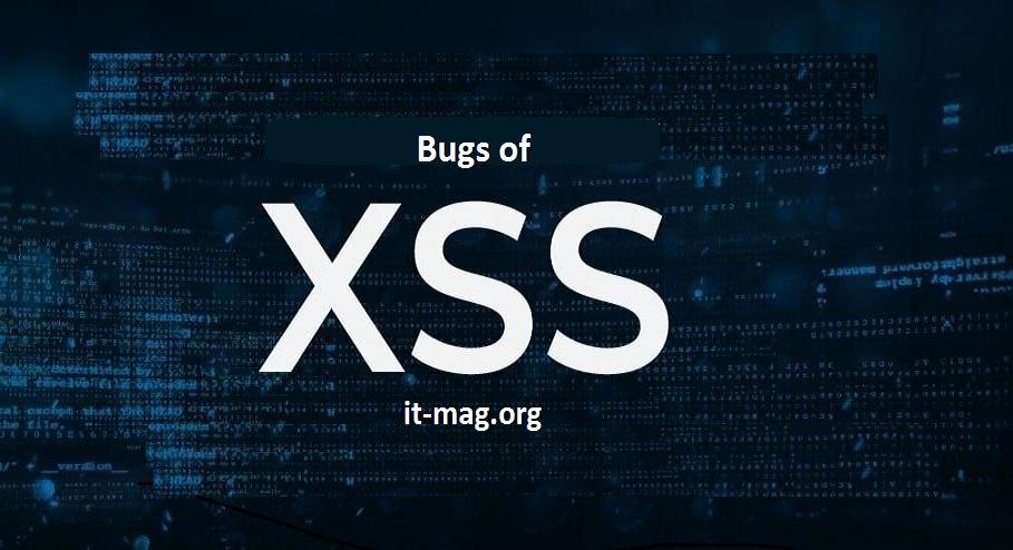 تشخیص باگ xss