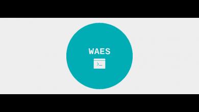 تصویر از آموزش تست نفوذ وب سایت با ابزار WEAS با کالی لینوکس