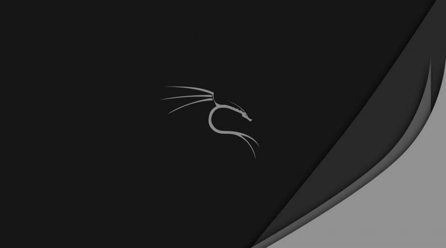 حل مشکل صفحه سیاه در کالی لینوکس